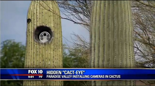 cactus-camara-trafico-arizona-201521347_